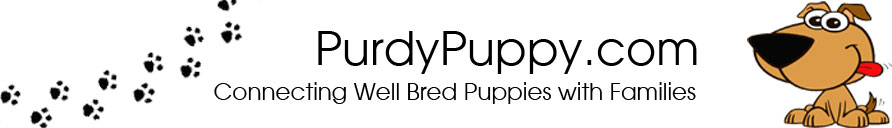 PurdyPuppy.com  - Connecting Well Bred Puppies with Families