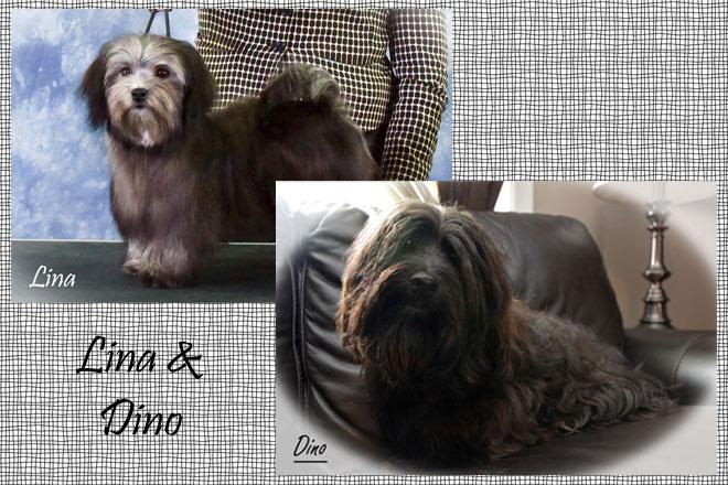 Lina_&_Dino